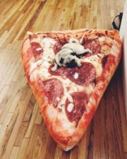 pizza-babzsák-01